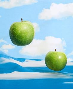 Magritte 246x300 0